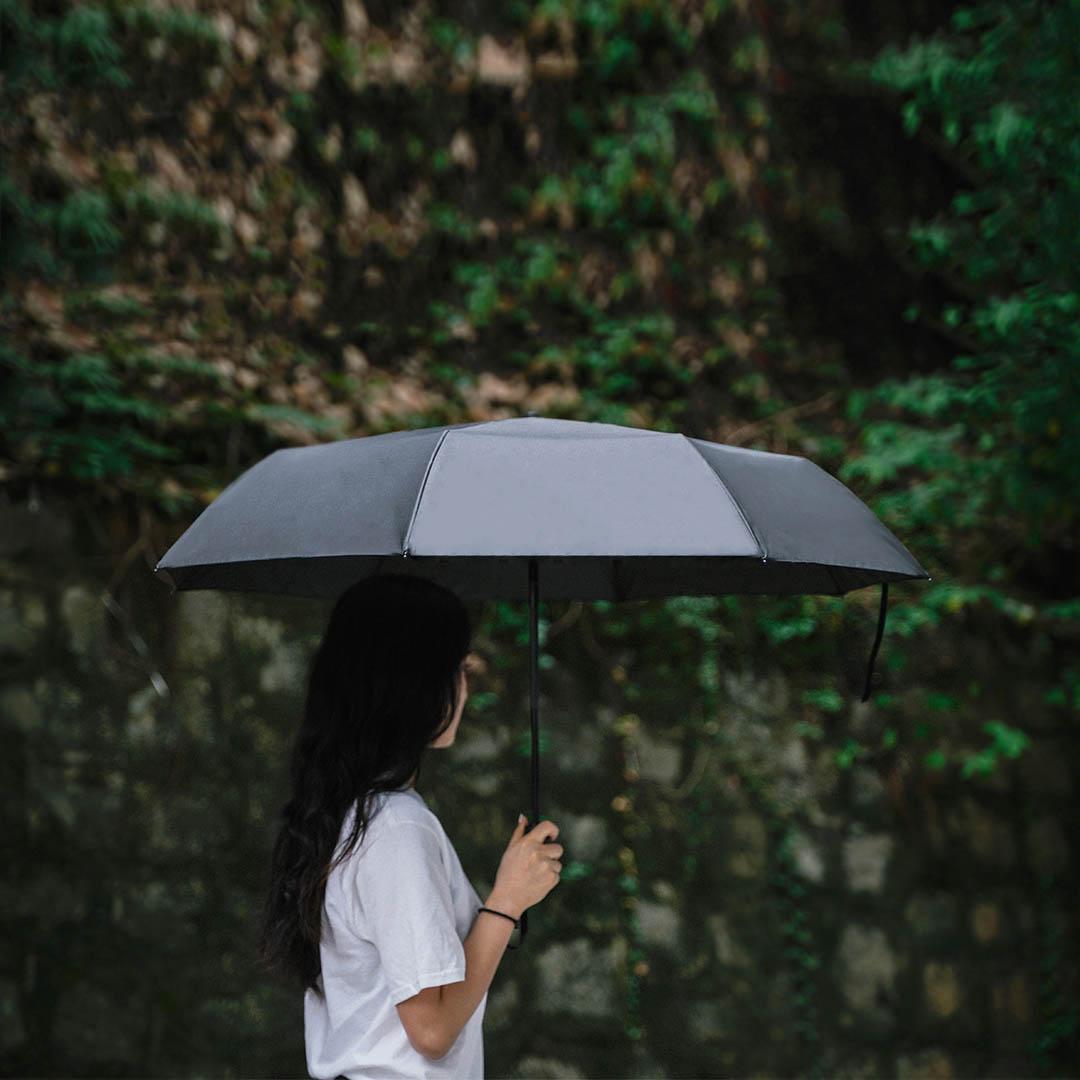 Зонт Xiaomi Mijia Auto Folding Umbrella WD1