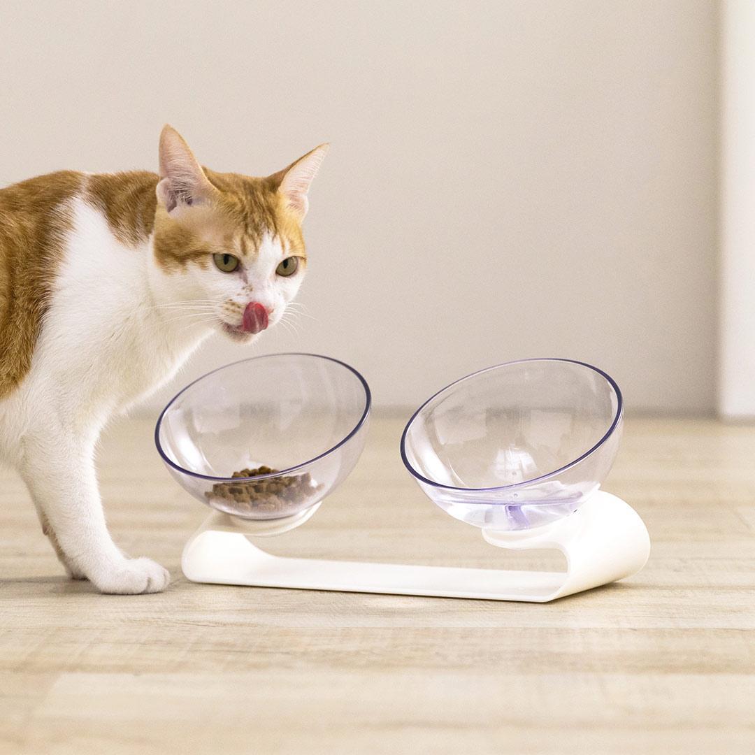 Миска для домашних животных Jordan Judy Pet Double Food Bowl